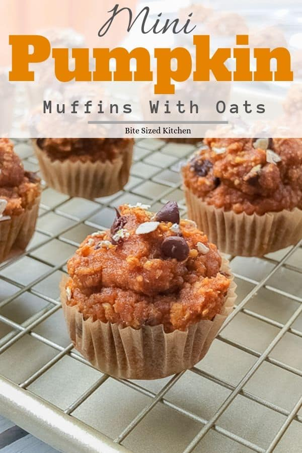 Healthy pumpkin oatmeal muffins with canned puree and chocolate chips! These are high is protein and a healthy breakfast!