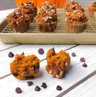 Easy healthy pumpkin oatmeal blender muffins with chocolate chips!