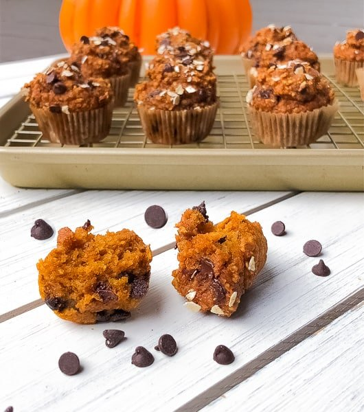Mini pumpkin puree blender muffins with chocolate chips