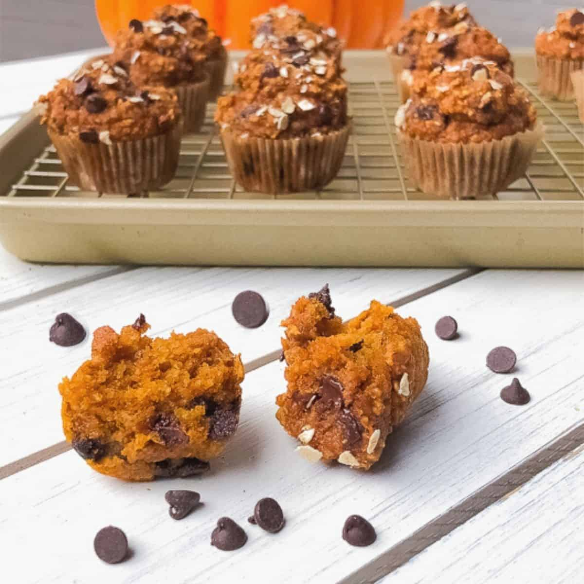 pumpkin pie mini muffins with chocolate chips on a table