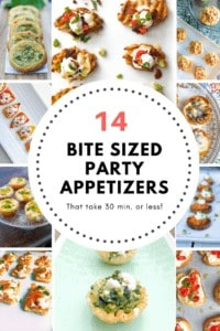 Easy party bite sized finger food appetizer recipes. Some you can make ahead some are fancy! All are perfect for parties or a crowd!