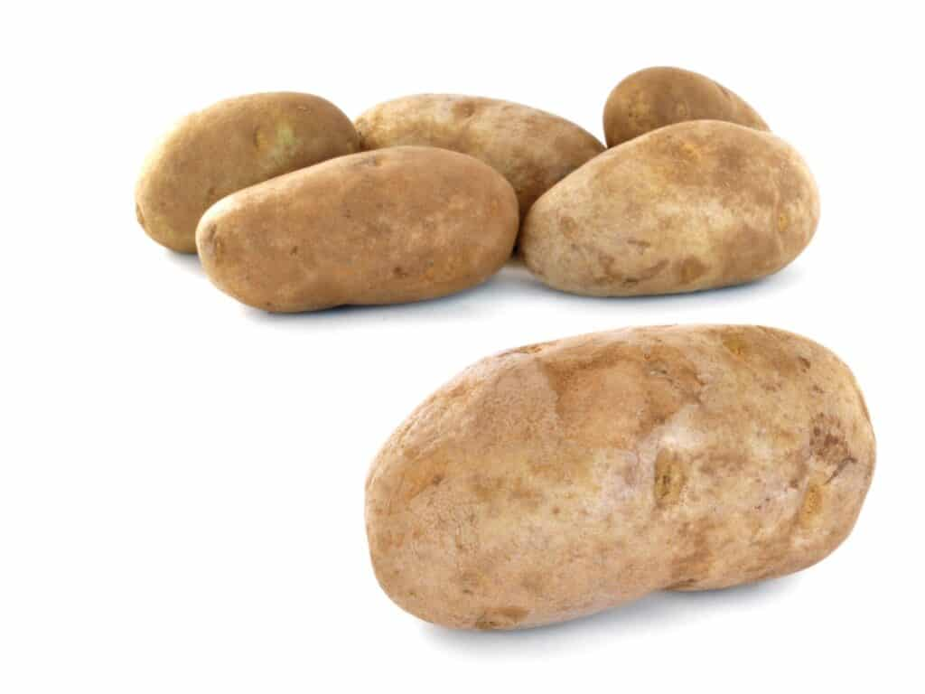 russet potatoes on a white background